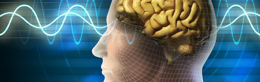 Cursos de Neurociências