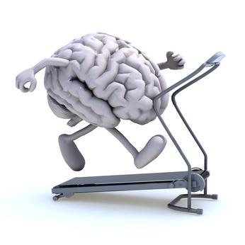Cerebro  – esse desconhecido!