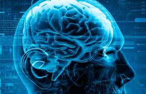 neuroscience-feature-art