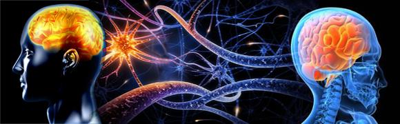 Programas com base em  Neurociências