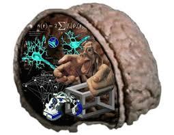 neurociências - Dr Jô Furlan
